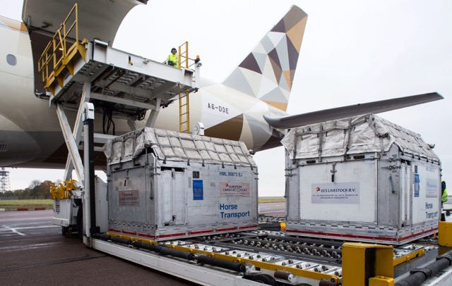 Etihad Cargo horse Stansted 2
