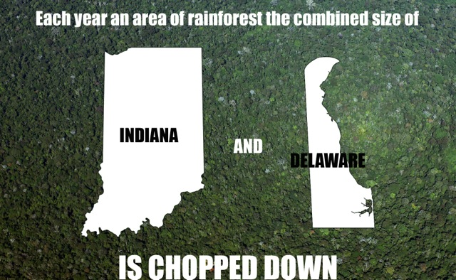 delaware-and-indiana